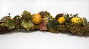 okrasné dýně působí podzimním dojmem