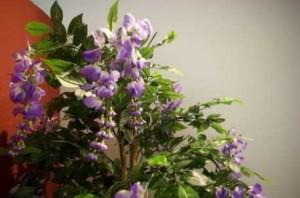 umela-kvetina-vistarie-strom-fialova-180-cm
